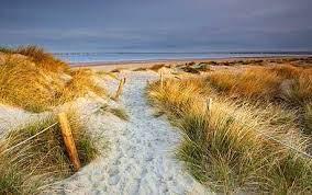 ball-beach_1637038c