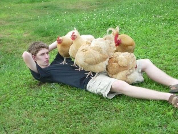 Chicken Bundle