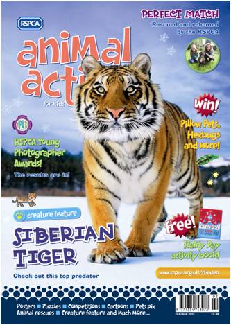 Animal-Action-FM-Cover