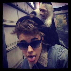 justin-bieber-instagram-monkey-430