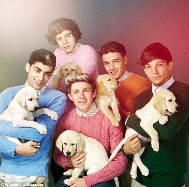One Direction Puppies