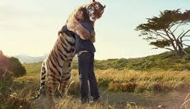 tiger-and-man-hugging