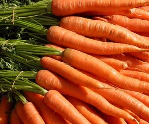 Carroty