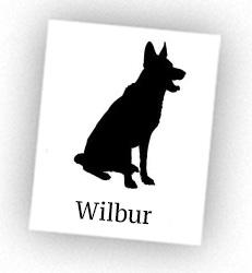 wilbur-NEWprofile-knightley