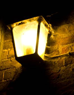 hcp-family-ghost-tour-light