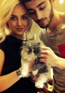Zayn-Malik-Perrie-Edwards-Cat