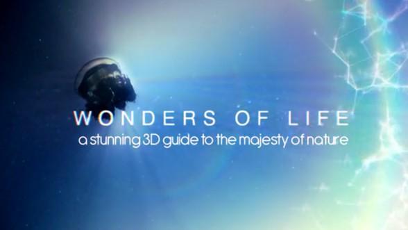 Wonders-of-Life-3