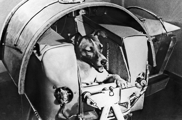 soviet-dog-laika-first-creature-orbit-earth-1957