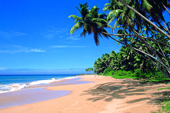 Sri-Lanka-Beach-Surf-Travel-1