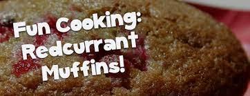 Redcurrent Muffins