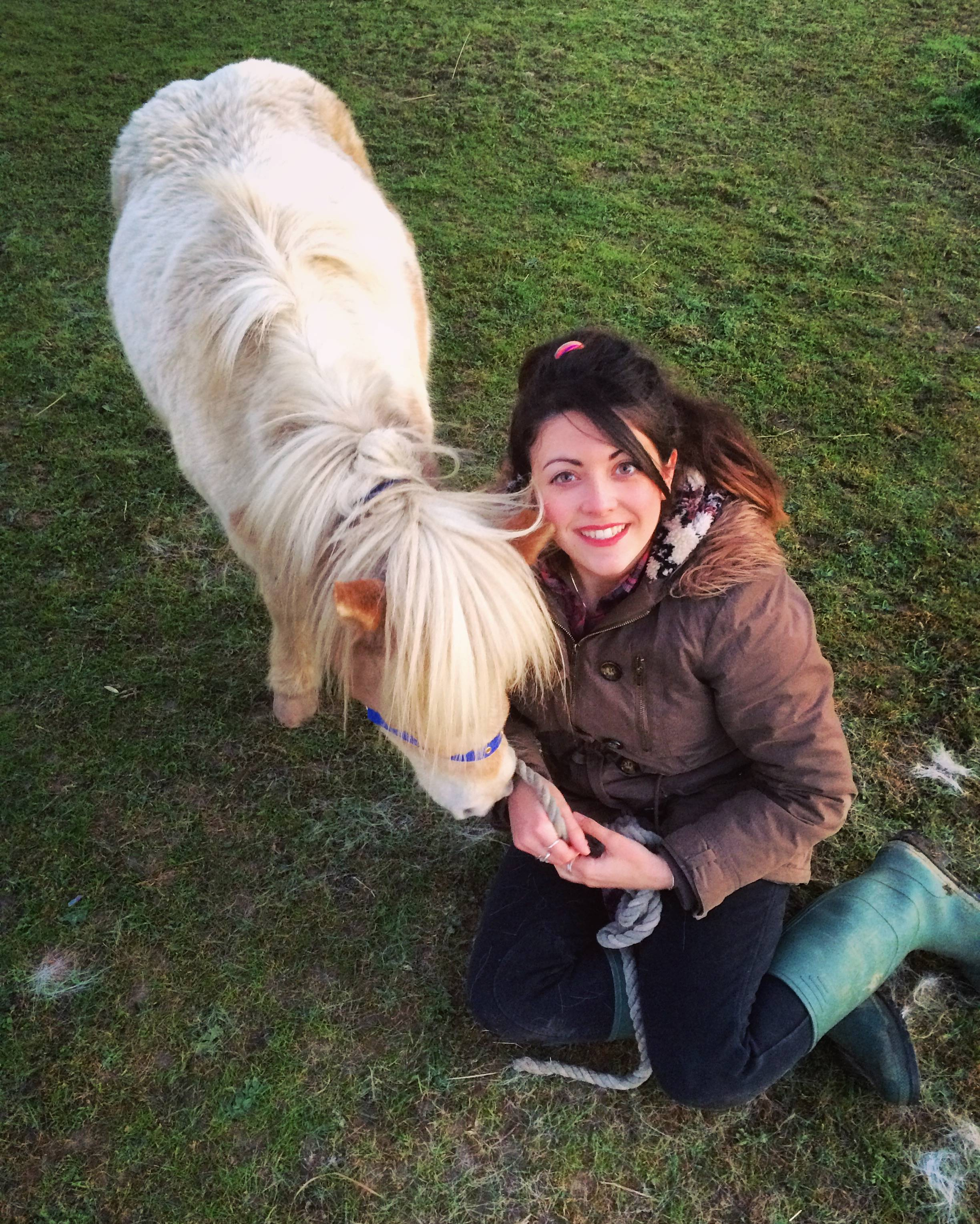 Sitting with Diesel, our other miniature horse to show how small he is!