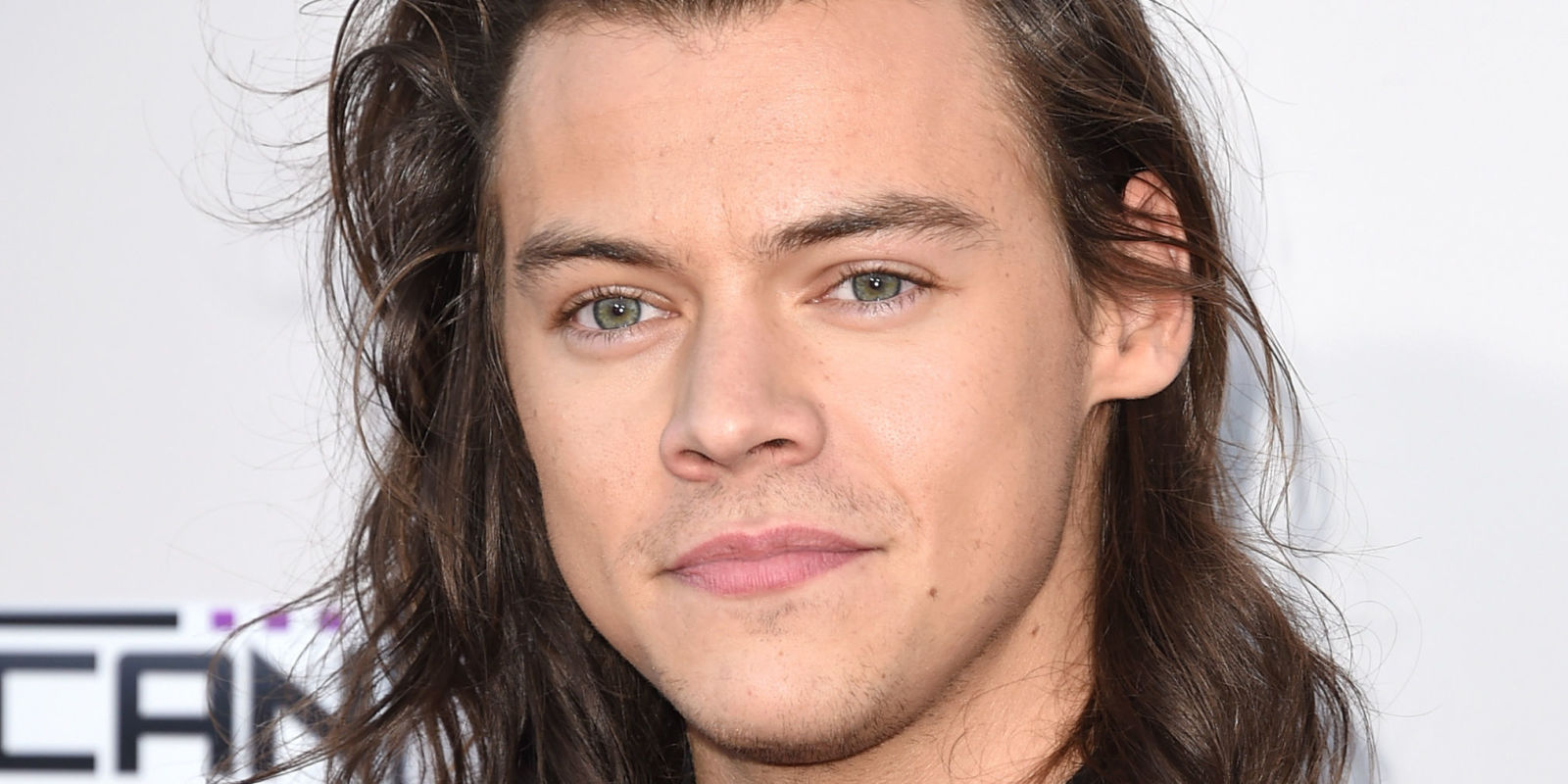 harry-styles-sparks-new-rumours-on-his-sexuality-01