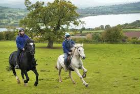 horse-riding-brecon-beacons-hacking-1
