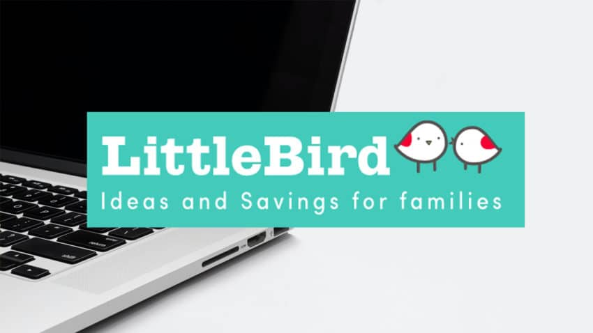 LittleBird's Top Picks