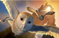 Legend-of-the-Guardians-The-Owls-of-GaHoole-Take-Flight-19-9-10-kc