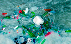 Plastic Found in Antarctic Seas