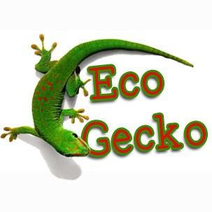 eco-gecko-sq