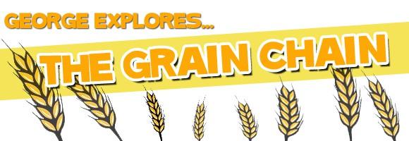 grain-chain-banner