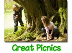 great-picnics-button