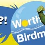 worthing-birdman